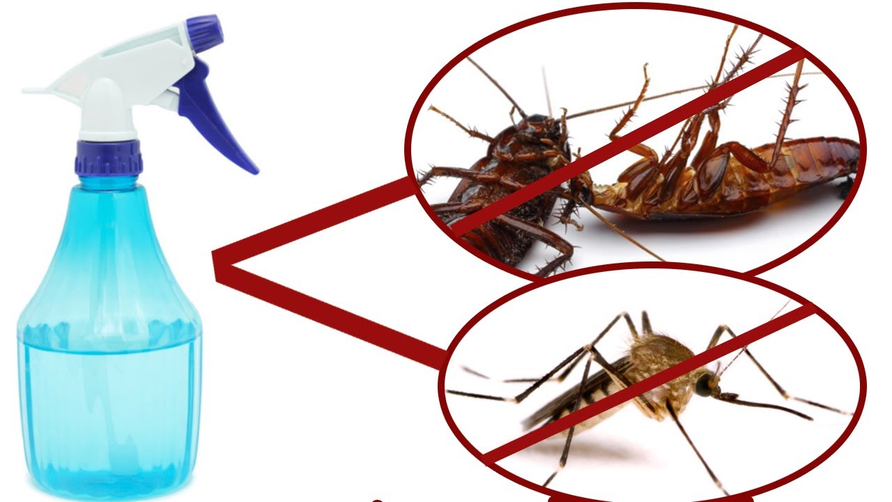 simple insecticide